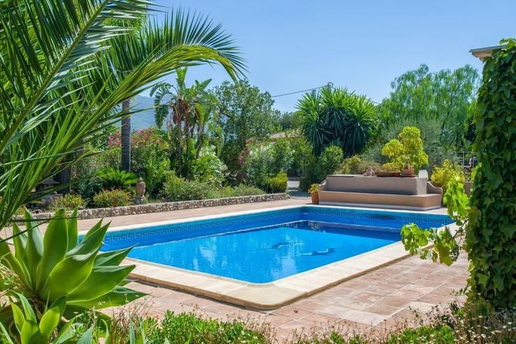 Bild 16: Finca 4600 qm Grundstück mit 2 Häuser und 2 Apartments zu verkaufen