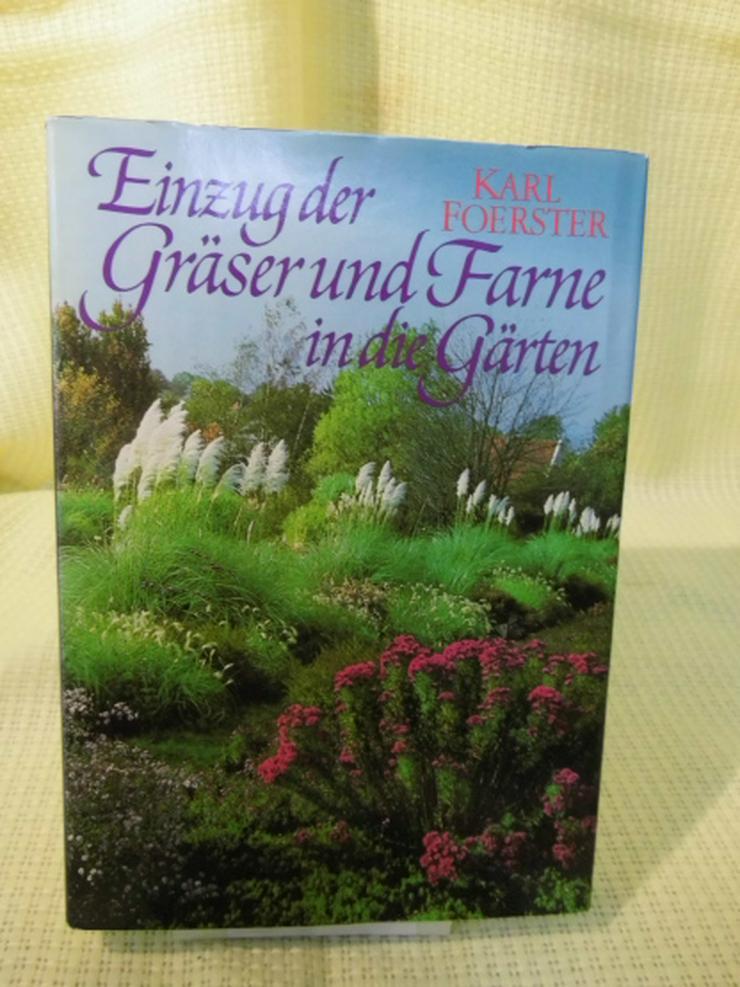 Einzug der Gräser und Farne in Gärten / Karl Förster / Neumann Verlag / Ratgeber