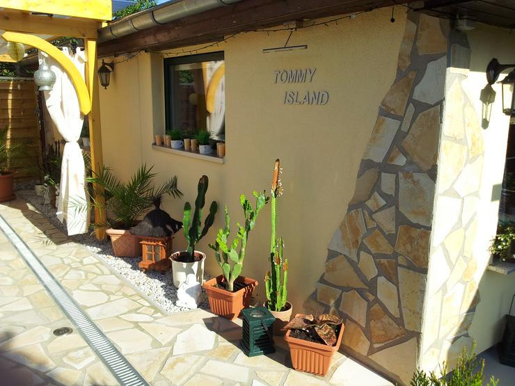 Bild 6: Natursteine Polygonalplatten Terrassenplatten Einfahrt Fassade Neu