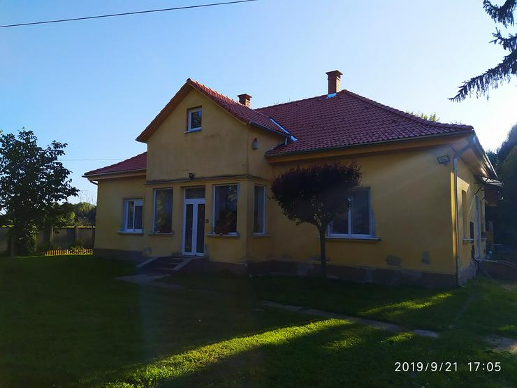Ruheinsel am Wald und Fluss in Ungarn - Haus kaufen - Bild 1