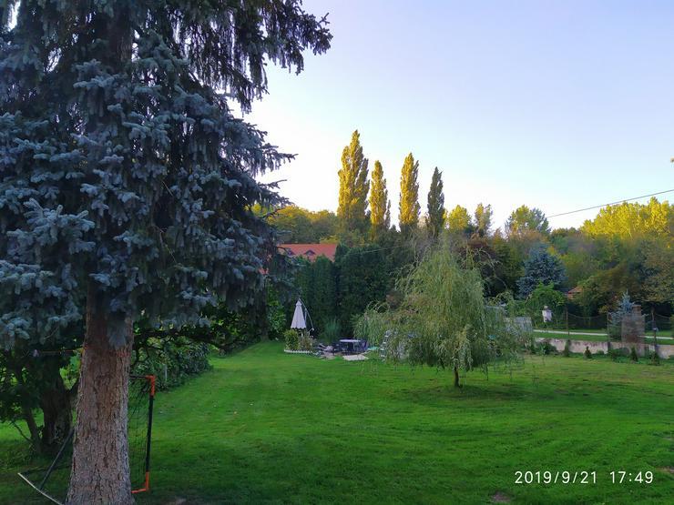 Bild 3: Ruheinsel am Wald und Fluss in Ungarn