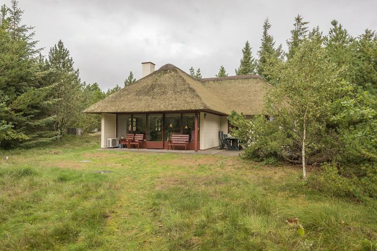 Ferienhaus Blaavand, Dänemark privat zu mieten