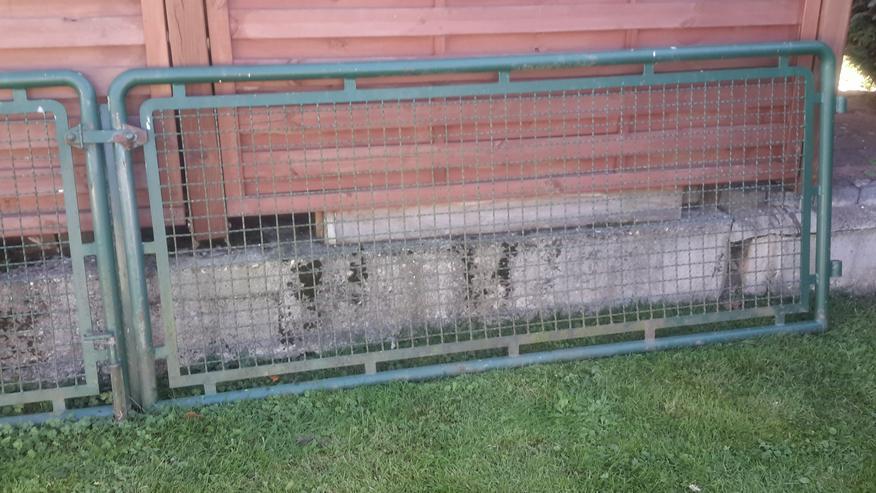Bild 3: Grünes Gartentürchen mit passender Doppelflügeltür