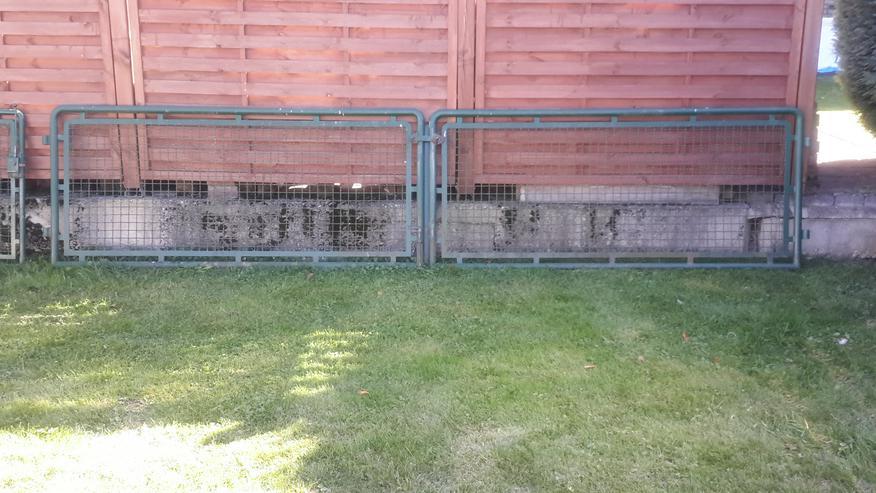 Grünes Gartentürchen mit passender Doppelflügeltür