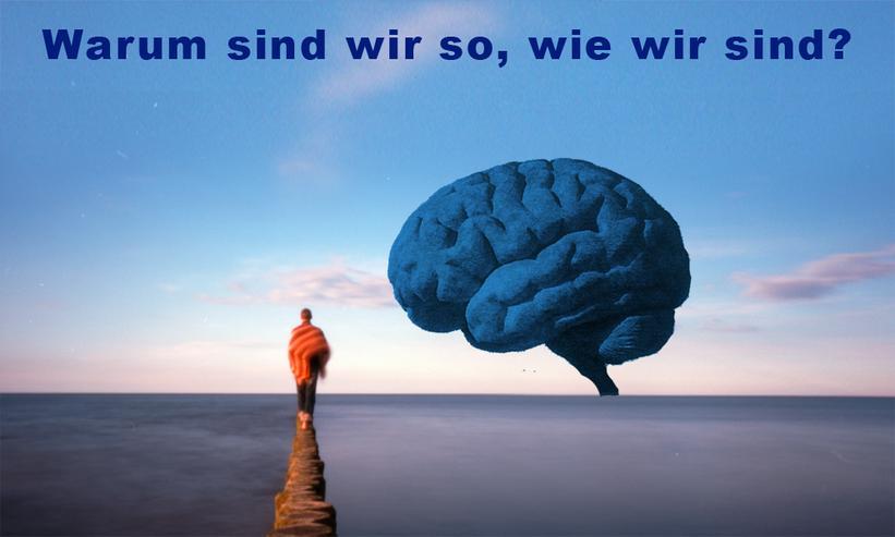 Psychologie - Freundschaft & Freizeitbegleitung - Bild 1