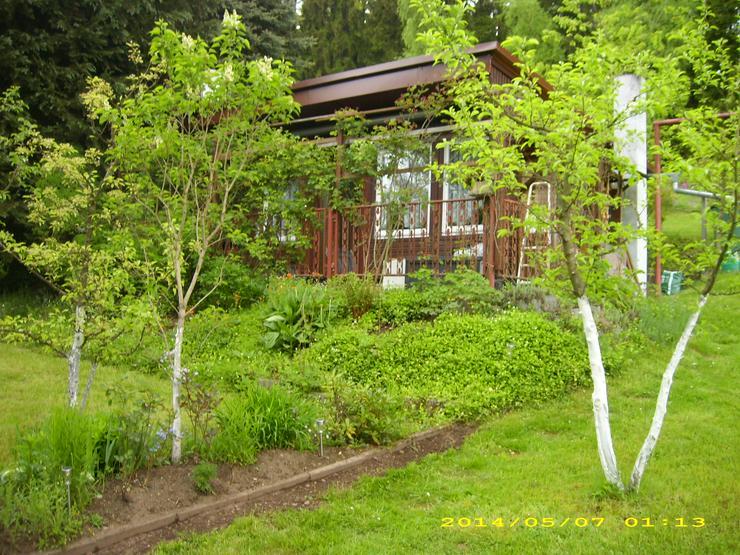 Garten in Kleingartenanlage