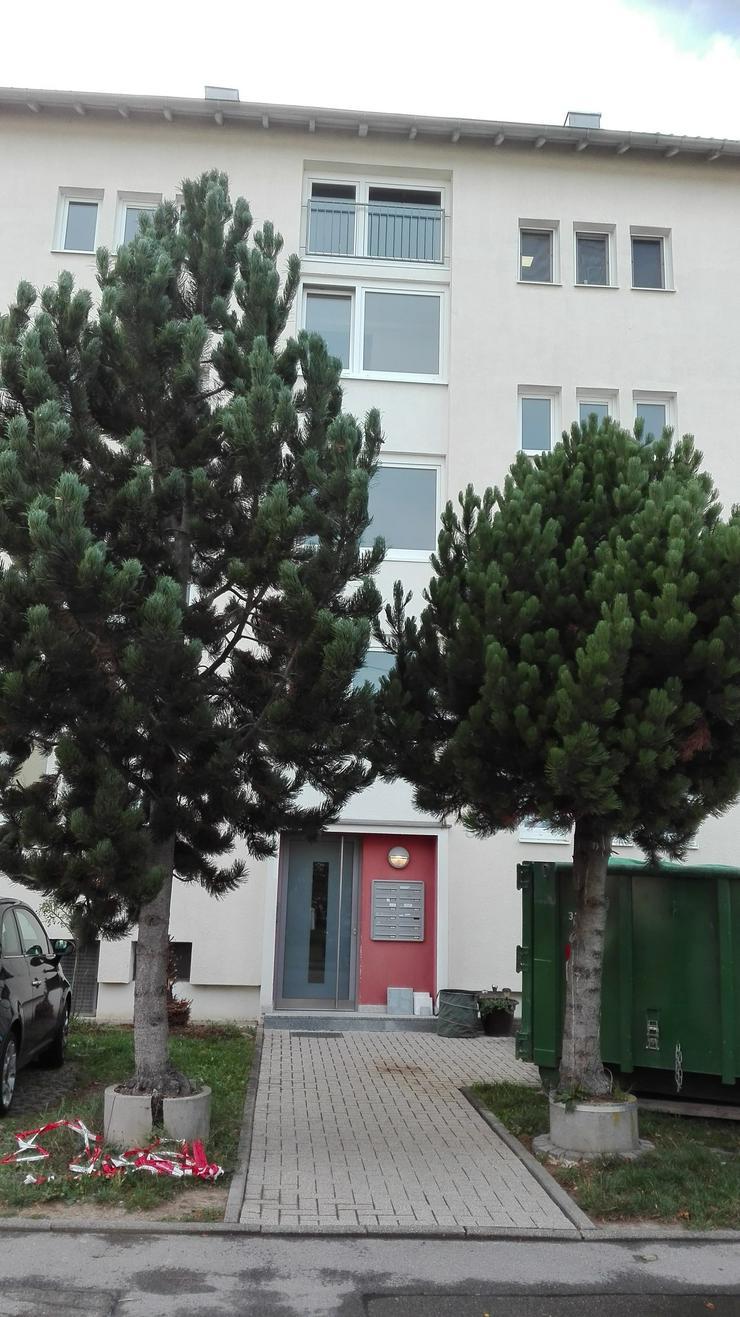 Bild 5: Nachmieter gesucht 2-Zimmerwohnung ab sofort in Kornwestheim, 70806 B.-W.