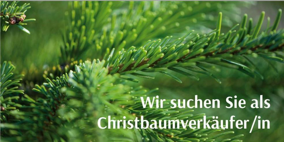 Christbaumverkäufer für Dez.2019 -- Dachau - Olching - München