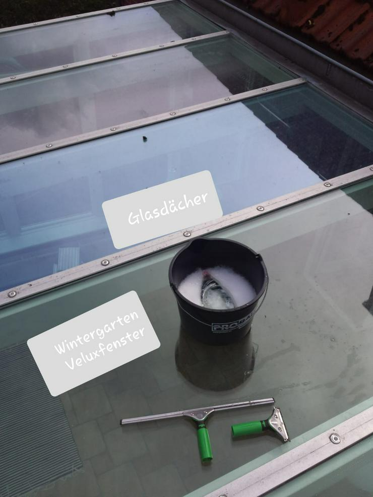 Bild 3: Fensterputzer Hamburg Fensterreinigung Glasreinigung Gartenpflege