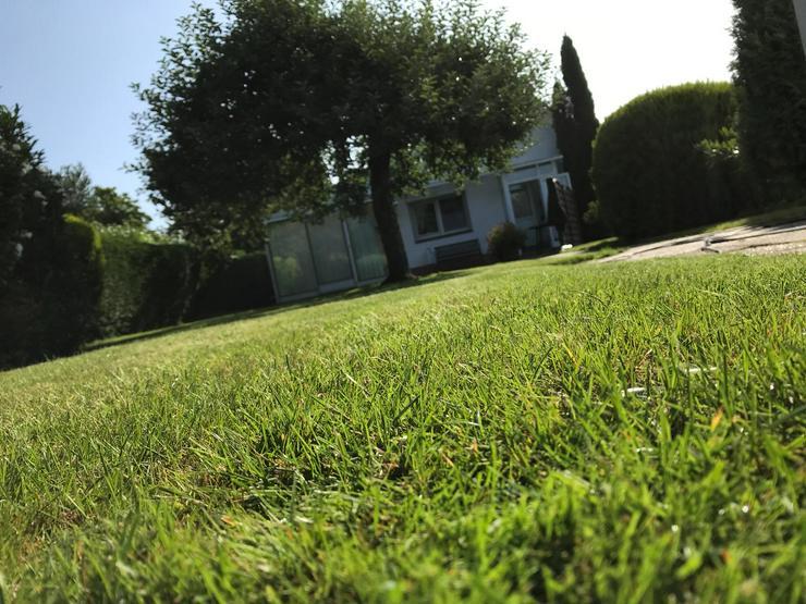 Gartenpflege Gärten Gartenarbeiten Heckenschnitt