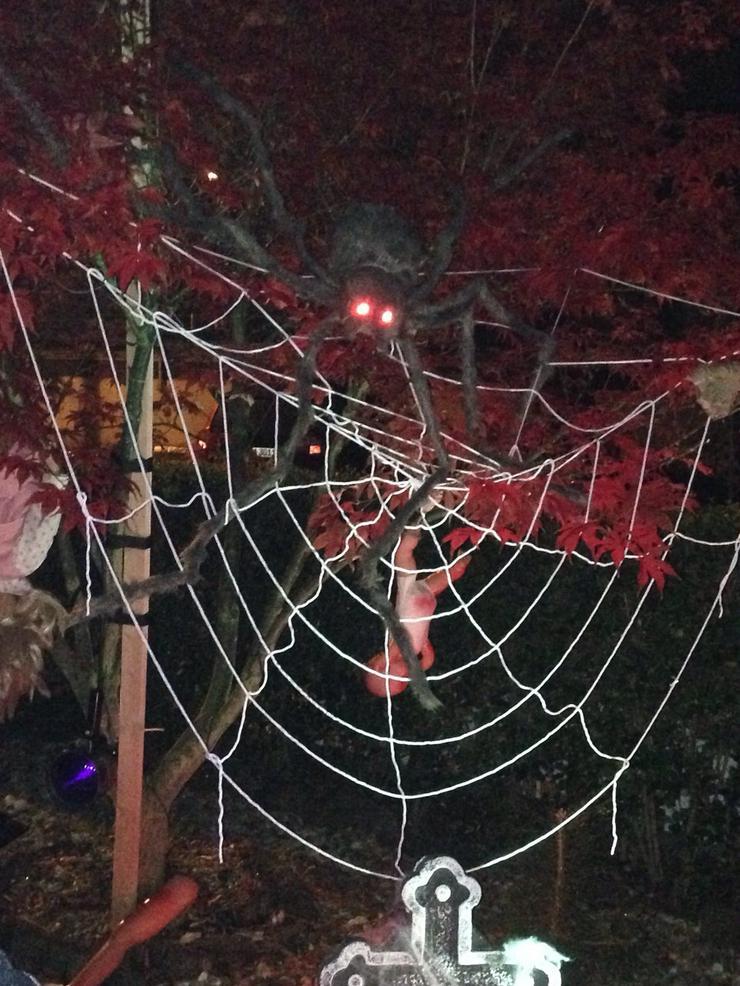 Bild 8: Halloween-Haus Wetzlar - nichts für schwache Nerven! 31.10.2019