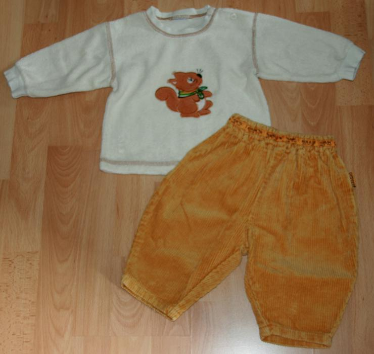 """SET - Sweat-Shirt & Hose - Größe 68 - 2teilig - """"Eichhörnchen"""""""
