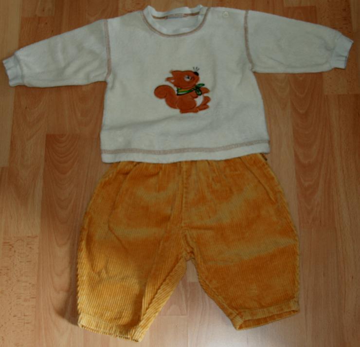 """Bild 2: SET - Sweat-Shirt & Hose - Größe 68 - 2teilig - """"Eichhörnchen"""""""