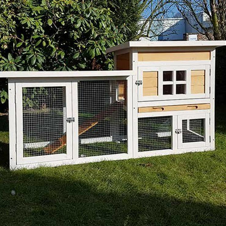 Bild 11: Heimtierzubehör für alle Haustiere