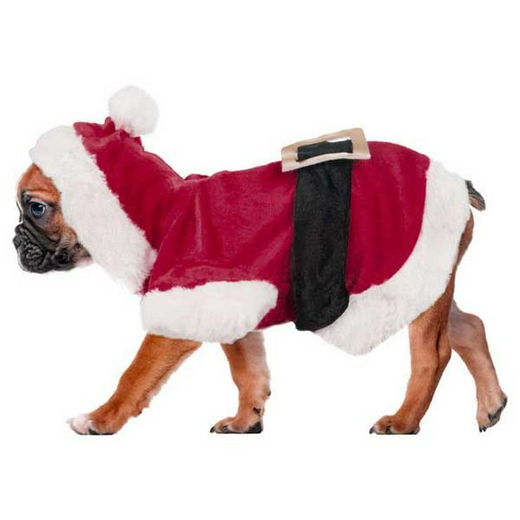Bild 16: Heimtierzubehör für alle Haustiere