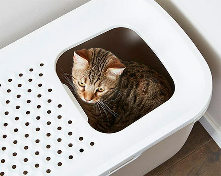 Bild 15: Heimtierzubehör für alle Haustiere