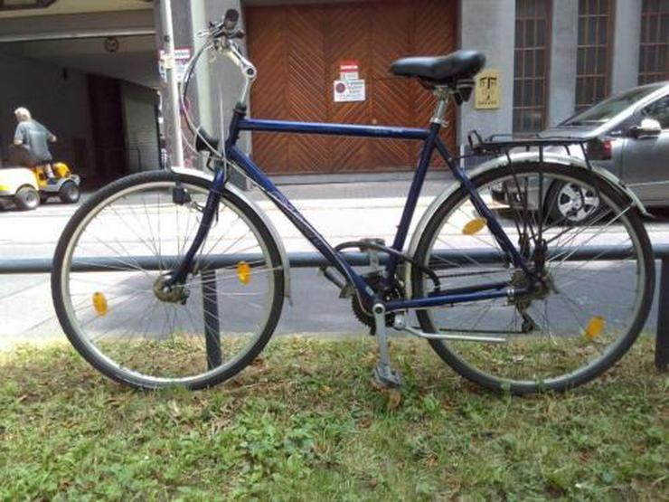 Fahrrad Giant