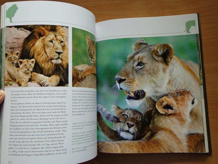 """Bild 10: Großbildband """"Tierkinder im Zoo"""", von Prof. Dr. Henning Wiesner, BLV-Verlag, NEU"""