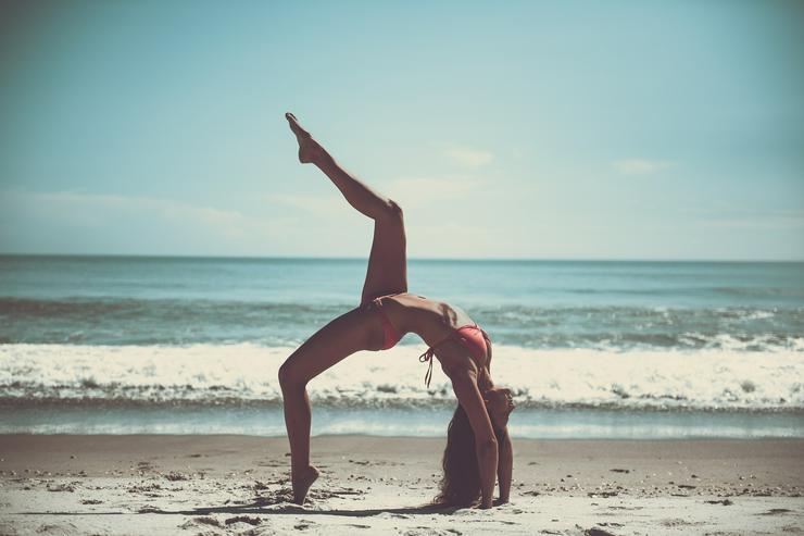 Die Fitness-Lektüre - Sportpartner - Bild 1