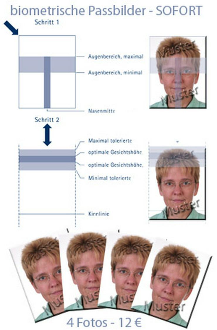 biometrische Passfotos - für Perso, Reisepass, Ausweis, Führerschein