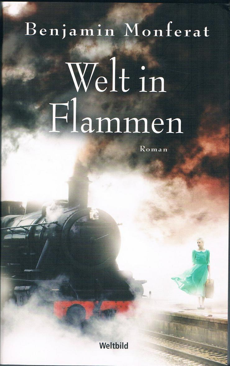 Welt in Flammen. Roman von Benjamin Monferat