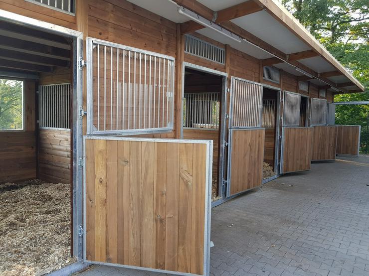 HOLZ Außenboxen für Pferde, Pferdeställe, Pferdeboxen, Weidehütte mit Fressgitter, Offenstall, Unterstand