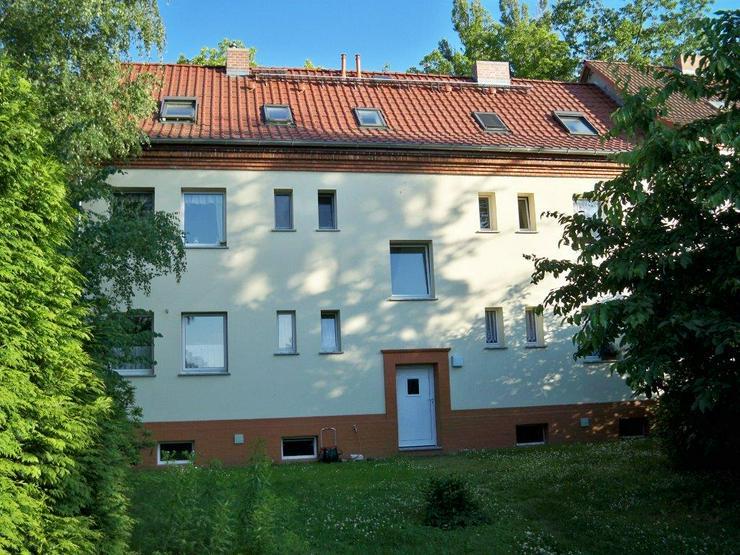 Gemütliche 2- Raum DG - Wohnung - Wohnung mieten - Bild 1