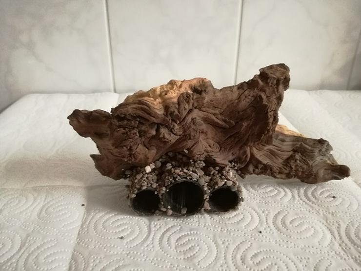 Bild 6: Höhlen mit Wurzel für Garnelen, Welse und kleine Buntbarsche