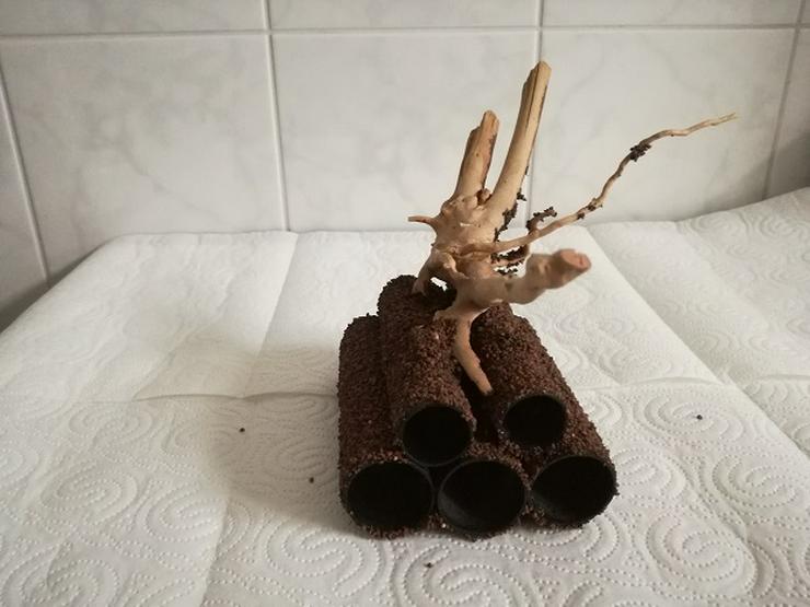 Bild 4: Höhlen mit Wurzel für Garnelen, Welse und kleine Buntbarsche