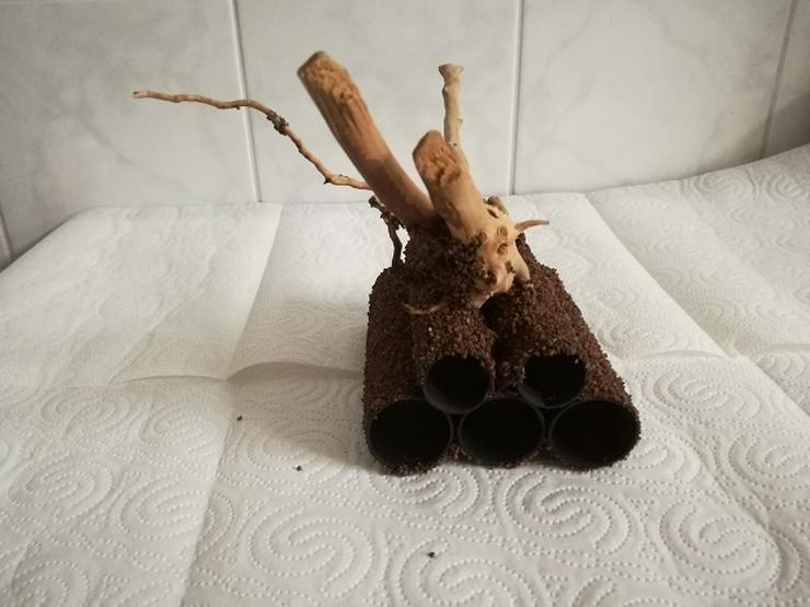 Bild 3: Höhlen mit Wurzel für Garnelen, Welse und kleine Buntbarsche