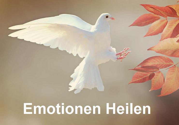 Emotionen Heilen - Esoterik & Spirituelles - Bild 1