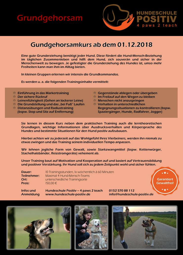 Grundgehorsam Kurs ab 01.12.2018 in Duisburg, Moers, Rheinberg, Kamp-Lintfort, Dinslaken, Krefeld, Oberhausen, Mülheim, Hundeschule, Hundetraining