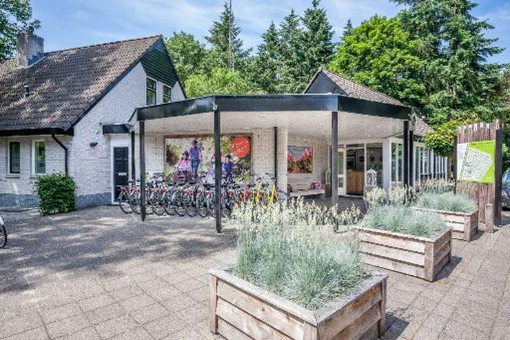 Bild 7: Freistehendes Ferienhaus gelegen im Wald in Harderwijk (Niederlande)