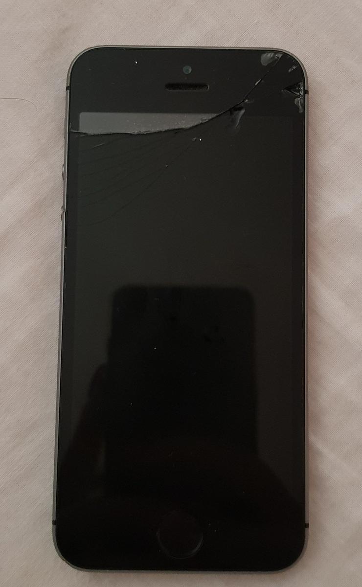 iPhone 5s für Bastler