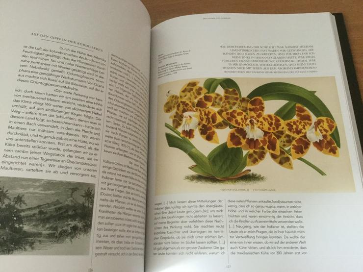 Buch: Mythos Orchideen