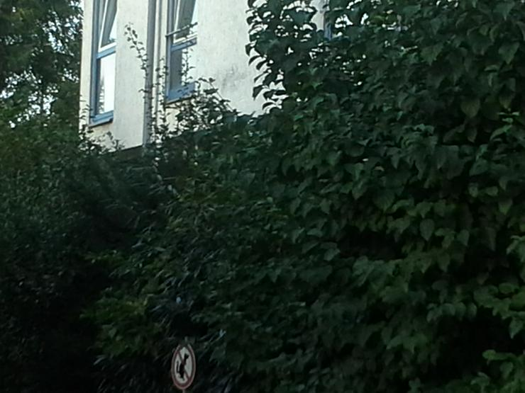 Single Appartement 30419 Hannover sehr ruhig