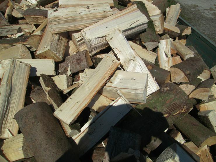 Brennholz, ofenfertig, trocken, 33 cm - Brennholz & Pellets - Bild 1