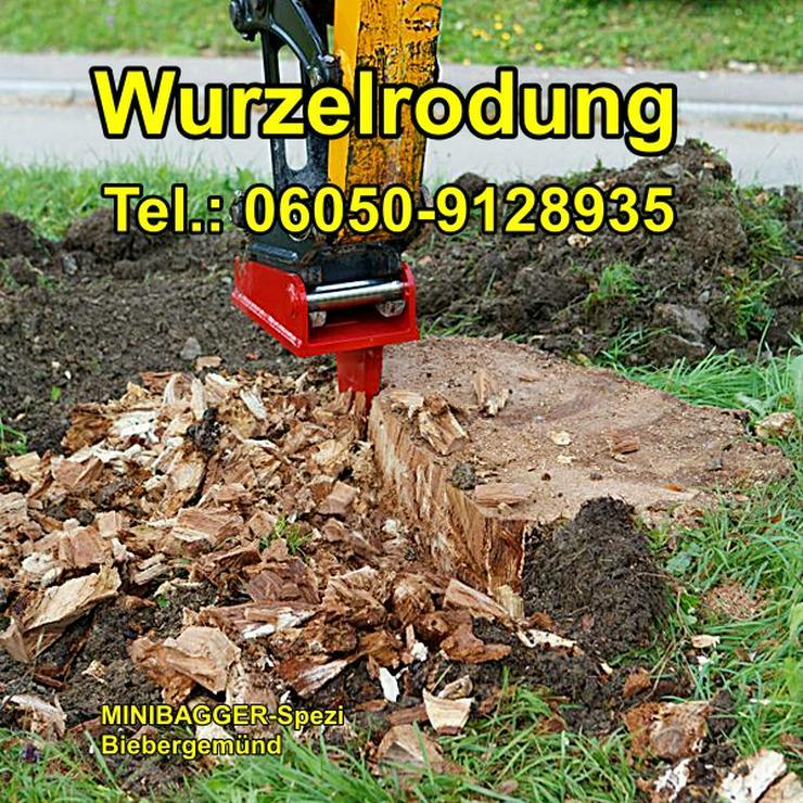 Bild 12: Minibagger mit und ohne Fahrer  /  Baumstumpf entfernen