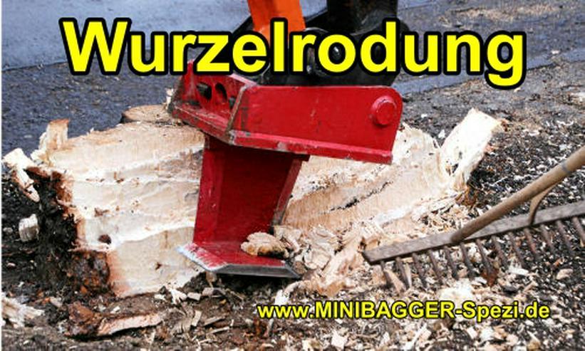 Bild 6: NEU !! Baumstumpf entfernen ohne Dreck, Staub und Lärm  (1 cm = 1 Euro) ~~ MINIBAGGER-SPEZI ~~ Biebergemünd