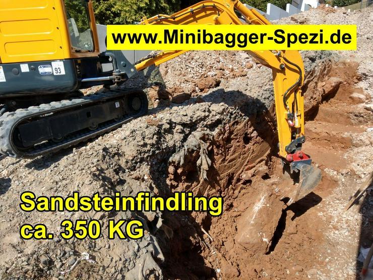 Bild 3: Minibagger mit und ohne Fahrer  /  Baumstumpf entfernen