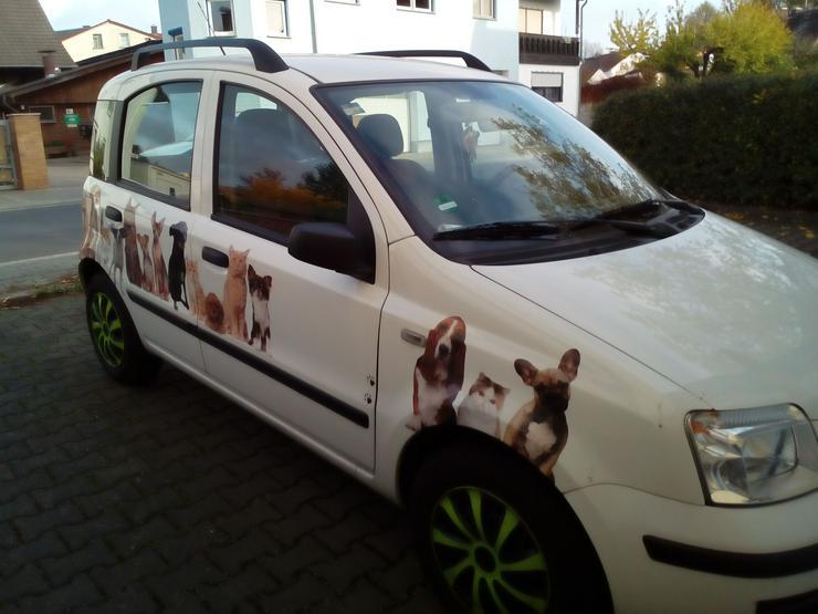 Bild 2: FIAT PANDA 1,2 DYNAMIK, AUTOMATIK, Gaspedal links