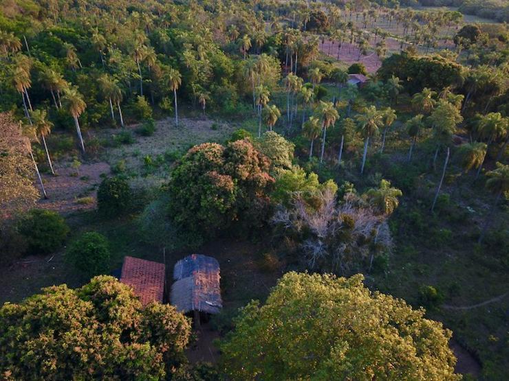 Grundstück in Paraguay - Grundstück kaufen - Bild 1