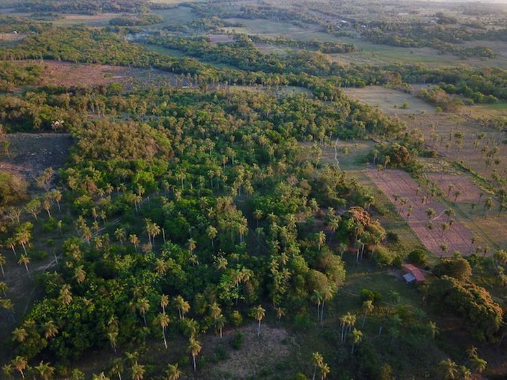 Bild 2: Grundstück in Paraguay