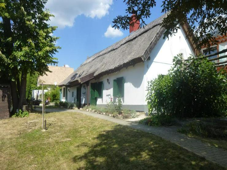 Exklusives Reetdachhaus