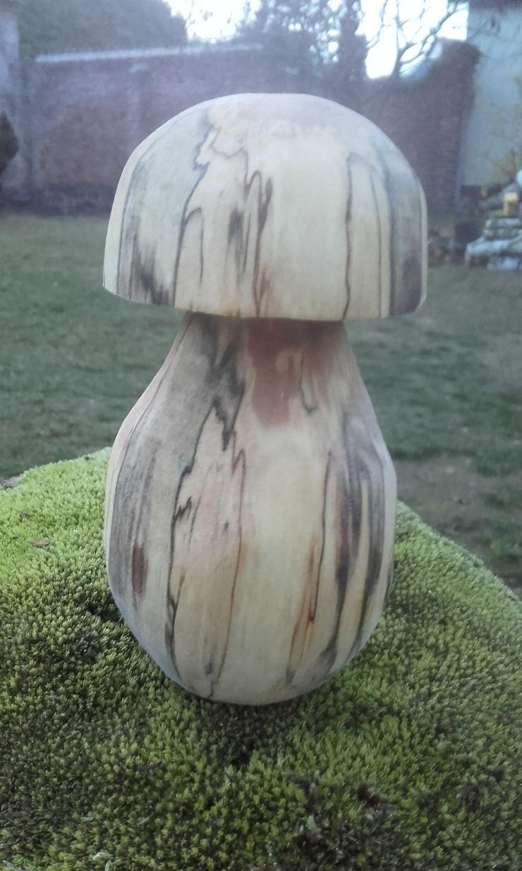 Bild 4: Dekopilz, Holzpilz, Pilz aus Holz