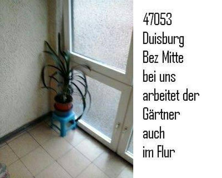 Bild 2: 2 Zimmer Whg Duisburg HHU - UDE