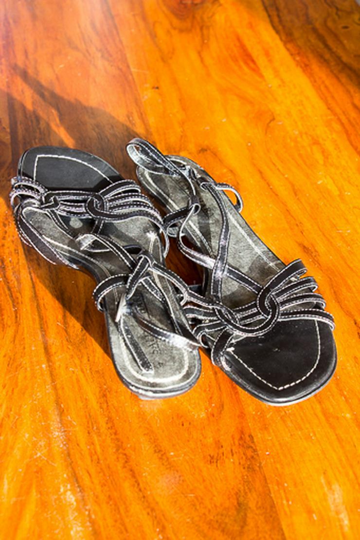 Sandalatte  -  Sally O' Hara