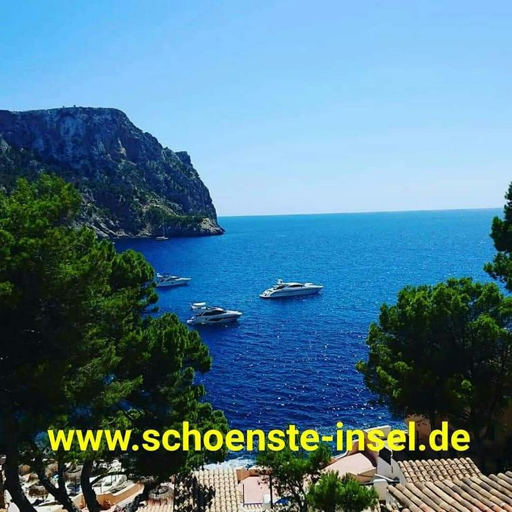 * * * * * Traumferienwohnung auf Mallorca