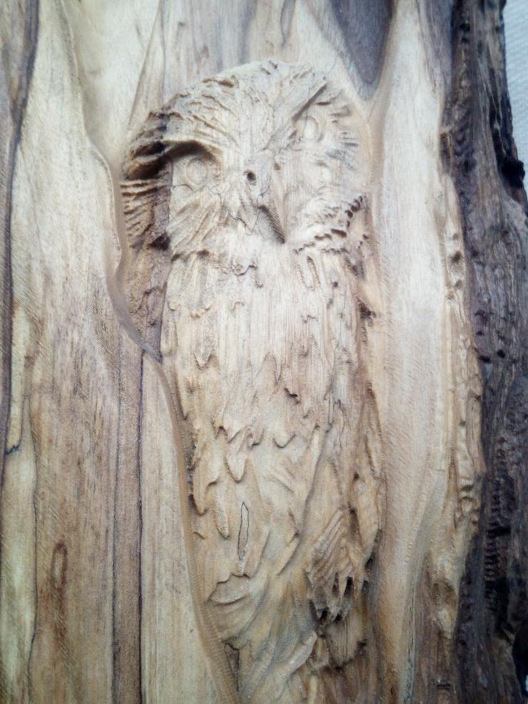 """Basrelief """"Eule im Baum"""" im natürlichen Stamm der roten Eiche. Geschenk, Kunsthandwerk"""