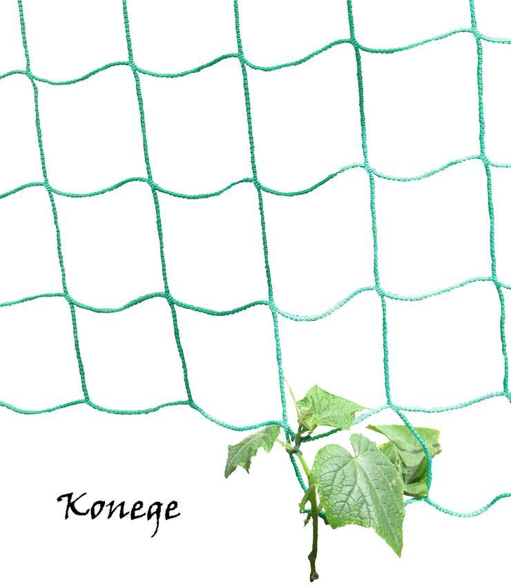 Ranknetz Rankhilfe 2 x 2m grün - Pflanzen - Bild 1